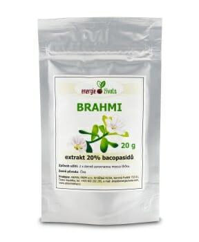 brahmi 20procent 20g - Posílení mozku a paměti za pomoci 9 potravin