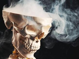 Nikotin zabíjí mozkové buňky a blokuje tvorbu nových.
