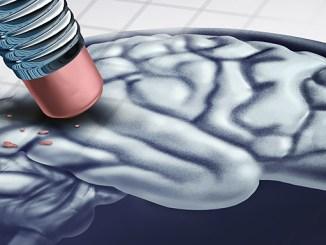 Alzheimerova choroba se dá zmírnit bylinkami.