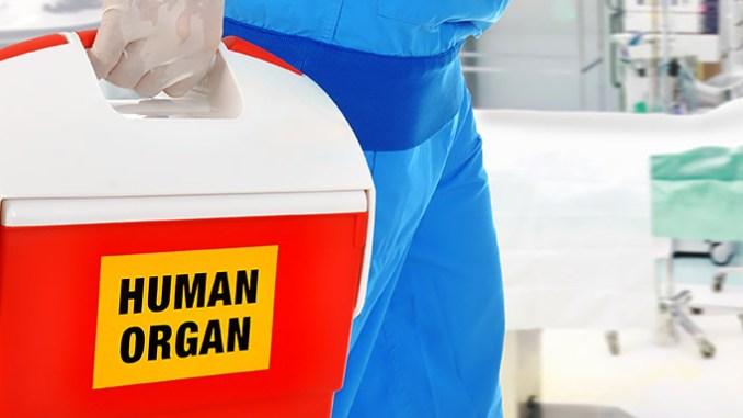 Mozková smrt neexistuje, transplantace orgánů je vražda.