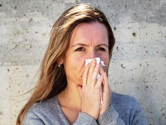 Alergie na prach z ovzduší: Jak ji mít pod kontrolou?