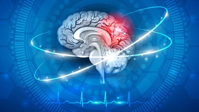 Smrt mozku nastává až 10 minut po zástavě srdce.