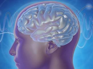 Neurovědci z MIT ukázali, že lidé mohou zlepšit svou pozornost s využitím neurofeedbacku, s jehož pomocí se utlumí alfa vlny na jedné ze stran parietálního kortexu.