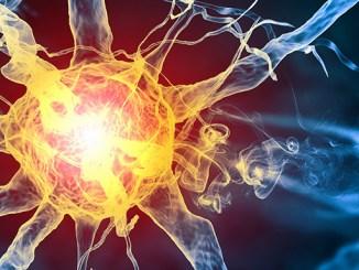 Neuron se nechová jako jednoduchá logická brána.
