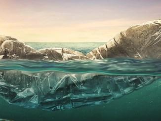 Plastové lahve představují ekologickou katastrofu.
