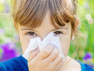 Zkřížená alergie: Jak se jí ubránit?