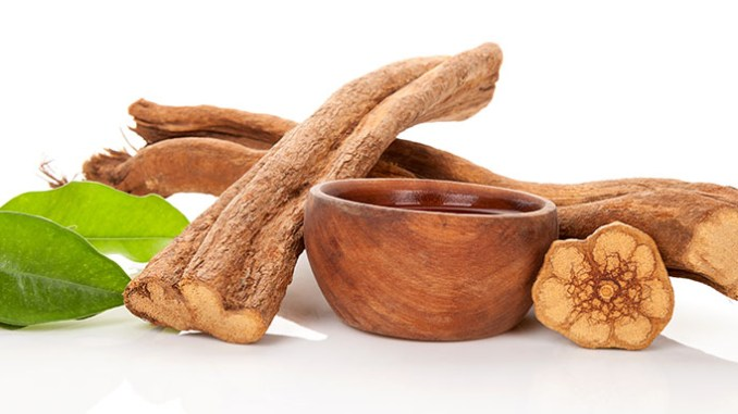 Mezi entheogeny se řadí rovněž ayahuasca.