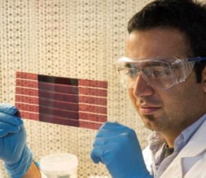 Plastic solar cells cheaper and more sustainable