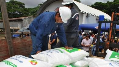 Photo of Productores de soya solicitan urea a precio de exportación