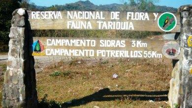 Photo of Presentarán el caso Tariquía ante la Comisión de la CIDH
