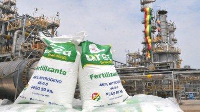 Photo of Buscan estabilizar el precio interno de la urea