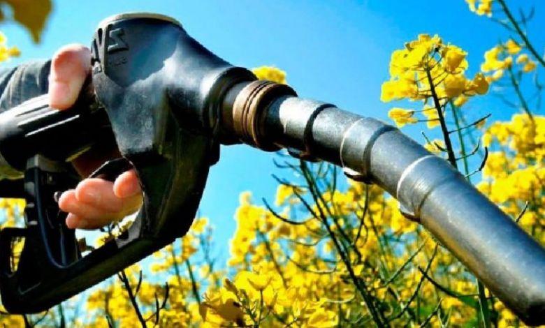 Photo of Argentina aprobó el nuevo marco de promoción de los biocombustibles