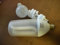 Incandescent And Compace Fluorescent (CFL) Light Bulbs