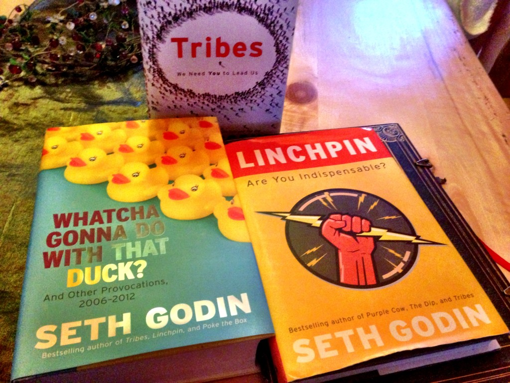 13 Seth Godin