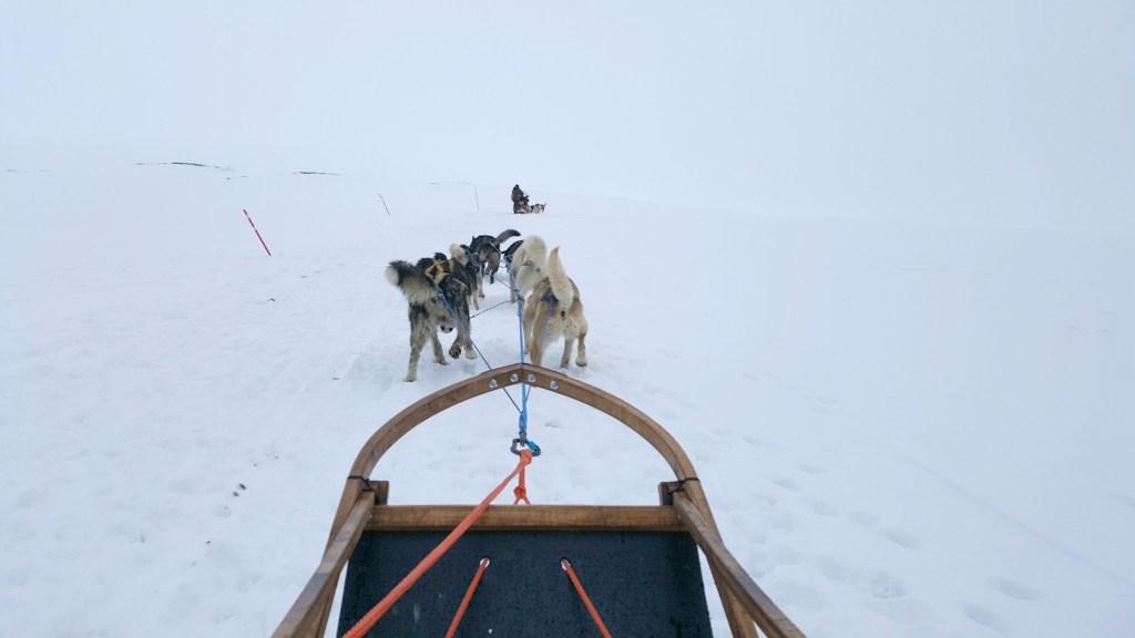 Longyearbyen_Hundeslaede