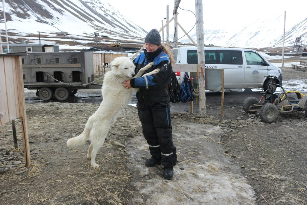 Svalbard_Hundeslaede