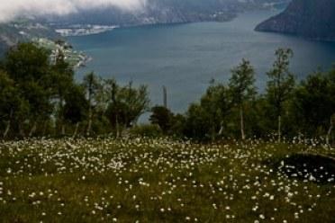 fjord-Nordddasfjorden-Norvège-voyage-enfant balade