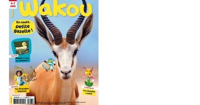petit-reporter-wakou-norvège-famille-magazine-voyage-enfant