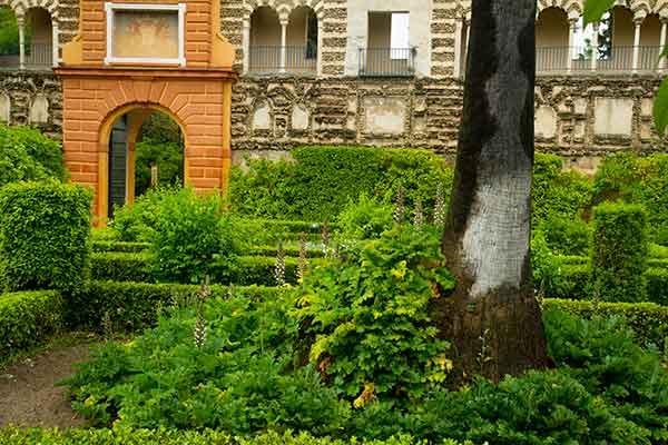 jardin-Alcazar-del-rey-Séville-Andalousie