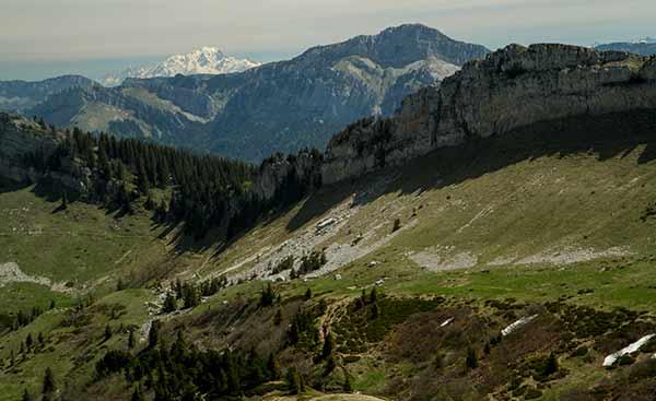 vue-sur-MOnt-blanc-depuis-grande-sure-Chartreuse-alpes