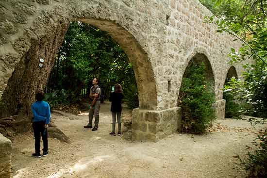 -Croatie-avec-enfants-arboretum-Trsteno