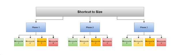 Shortcut to size