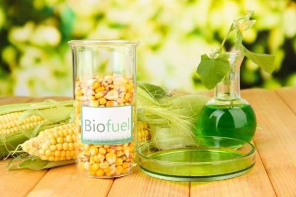 Biofuel is defined as fuel that is produced through contemporary processes from biomass, rather than by the very slow geological processes involved in the formation of fossil fuels, such as oil.