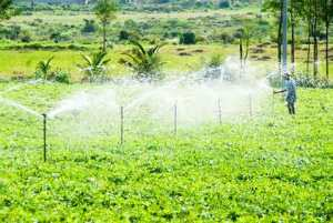 sprinkler irrigation method