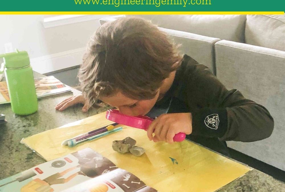 Be a Fossil Hunter at Home | STEAM Activity for Kids