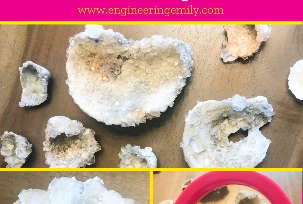 Grow Crystals on Seashells | STEAM Activity for Kids