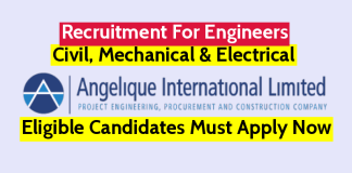 Angelique International Ltd Recruitment For Civil, Mechanical & Electrical Engineers Apply Now