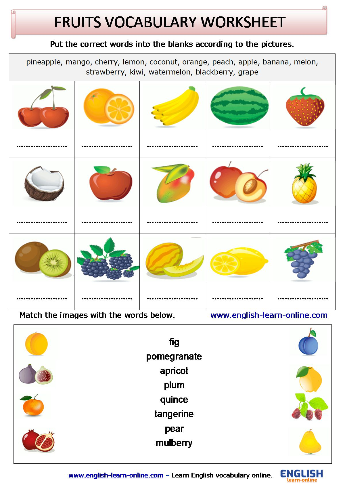 Fruits Vocabulary In English