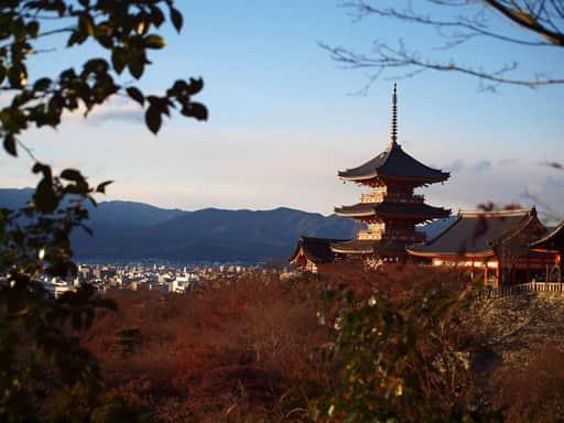 日本でのオンラインカジノの位置づけ