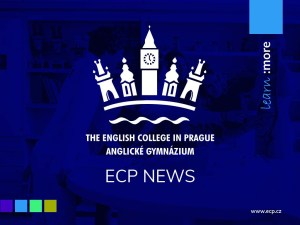 ECP exam results