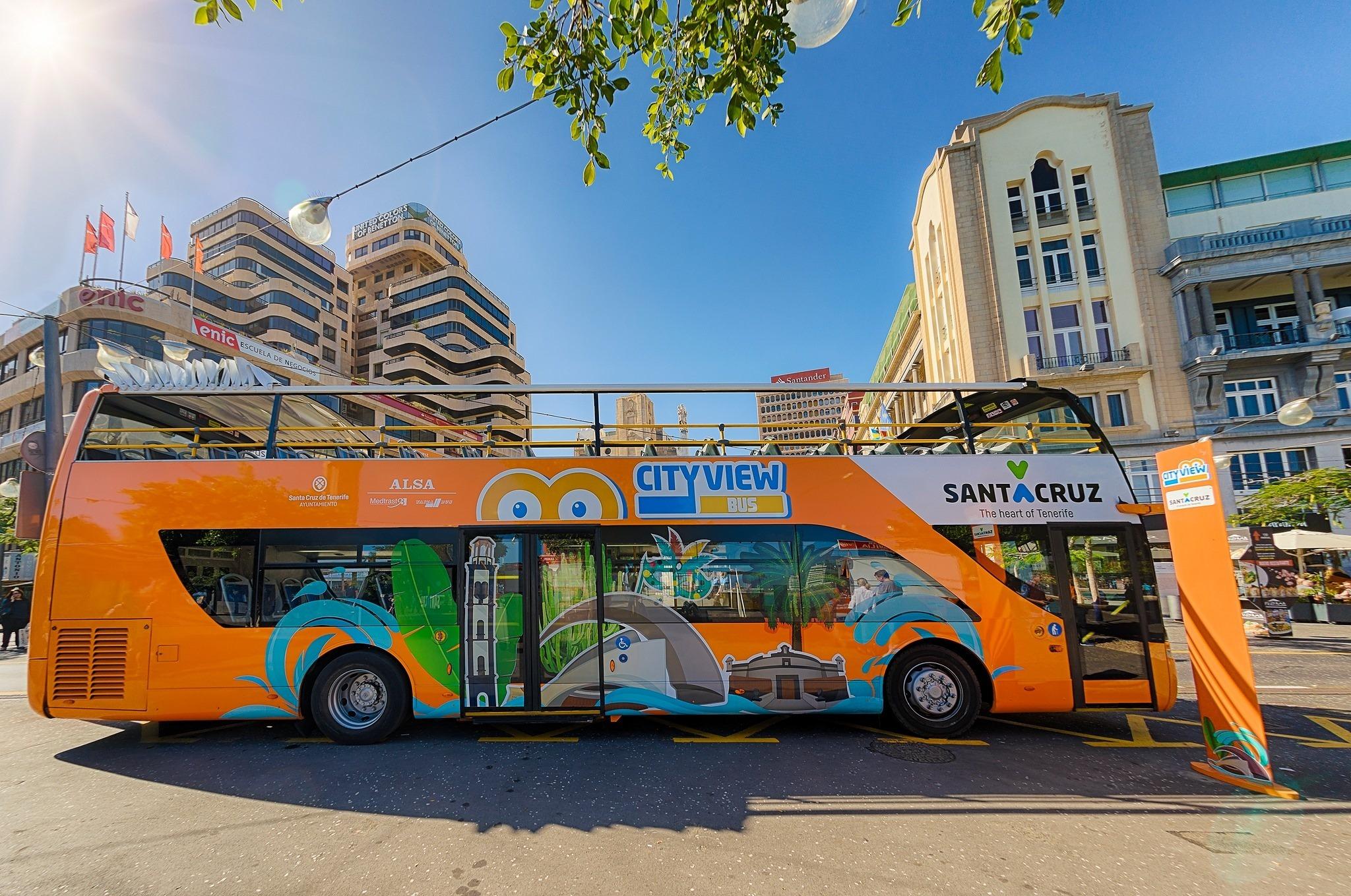 Tourist busses in Santa Cruz see increase in passenger numbers