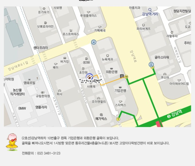 Directions to Gangnam cat Cafe