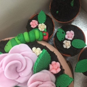 Graham's Birthday Cake shaped like flowerpots complete with very hungry caterpillar
