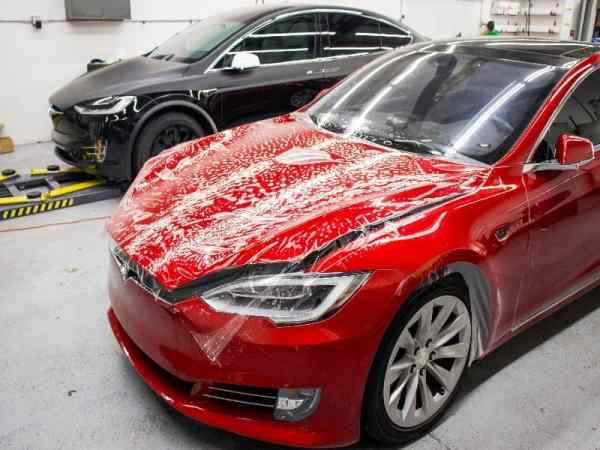 tesla model s pain protection