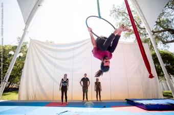 PROCESO DE FORMACIÓN en artes circenses