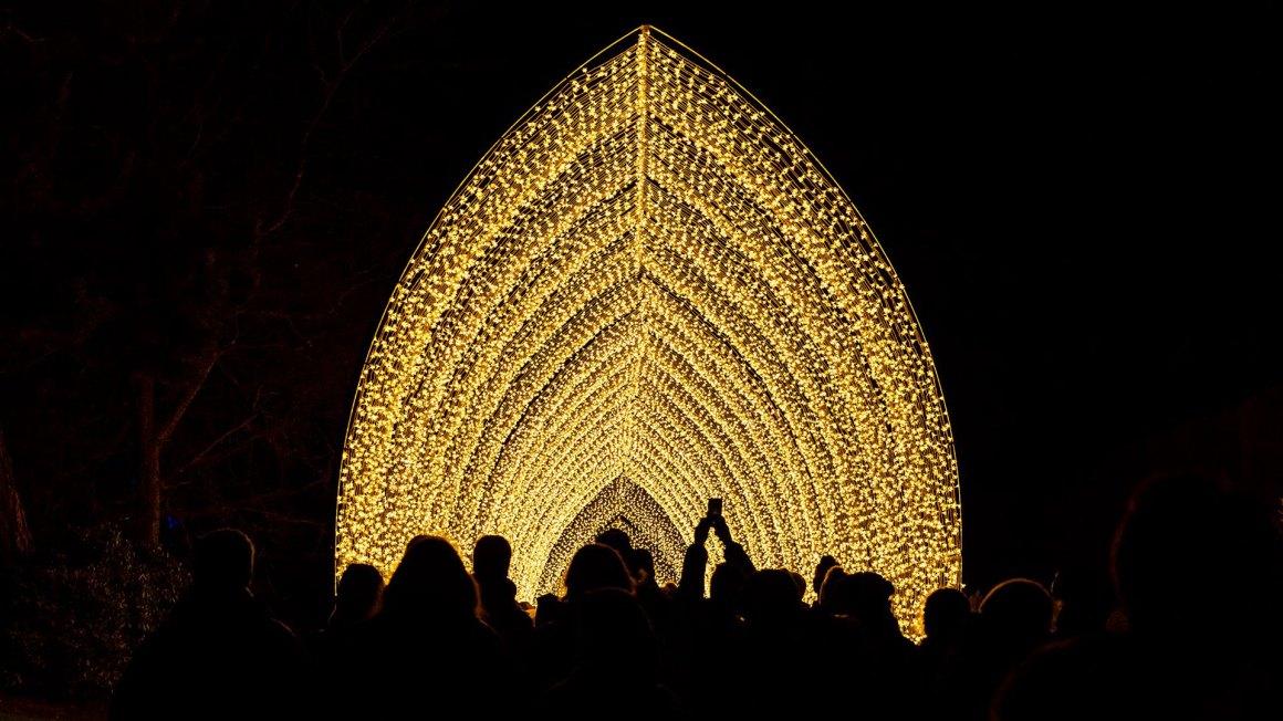 Lightscape at Chicago Botanic Garden | Enjoy Illinois