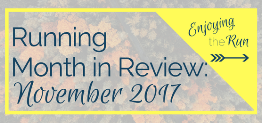 Running Month in Review: November 2017 | Enjoying the Run