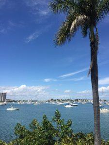 Beach Loop. Foto: Enjoy Miami
