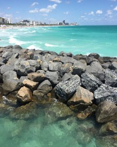 South Pointe Park: Foto Enjoy Miami