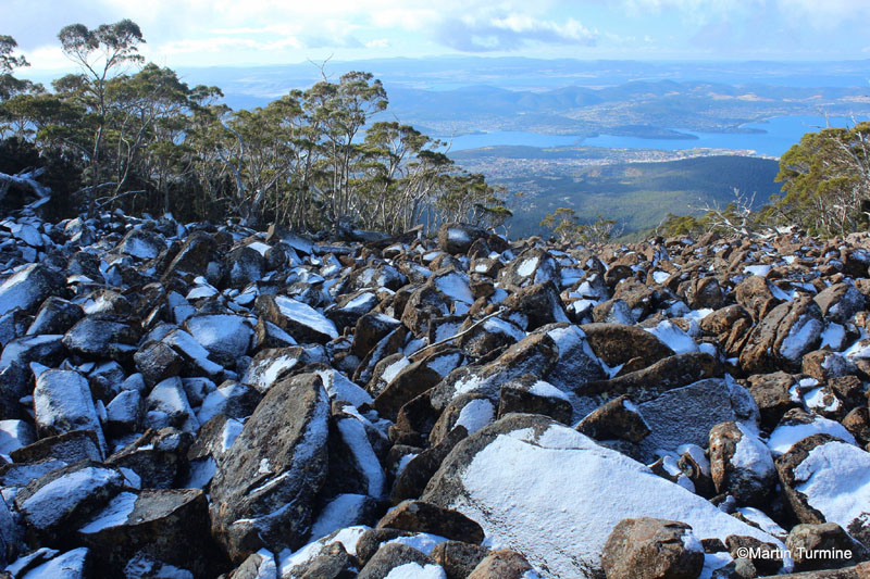 A trip to the top of Hobart's Mount Wellington is a must