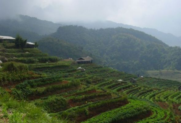 angkhang-agriculture-garden