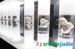NOCHE DE MUSEOS INQUISICION-66