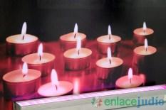 25-ENERO-2018-DIA INTERNACIONAL EN MEMORIA DE LAS VICTIMAS DEL HOLOCAUSTO EN COPRED-292