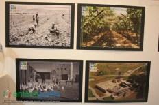 09-JUlIO-2018-EXPOSICION FOTOGRAFICA DEL KKL EN EL CENTRO CULTURAL MEXICO ISRAEL-59