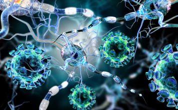 ¿Qué hace que un virus, como la cepa altamente contagiosa que ahora causa una pandemia mundial, sea diferente de otros gérmenes, como bacterias u hongos?