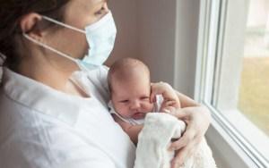 Anticuerpos de mujeres embarazadas se transmiten a sus bebés